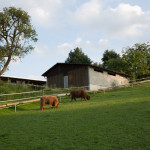 donau-radtour-budapest-schweiz-040